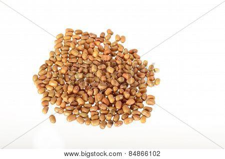 Closeup Of Moth Beans Heap, Indian name Matki