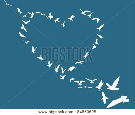illustration with heart from gull silhouettes isolated on blue background