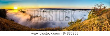 View misty dawn in the floodplain of a river