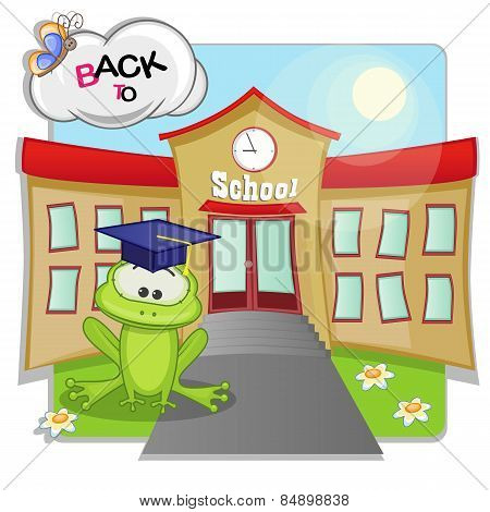 Frog And School