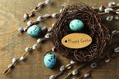 stock photo of pussy-willows  - Bird eggs in nest and pussy willow flowers branches on wooden background - JPG
