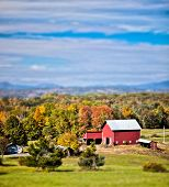 picture of dairy cattle  - Generic looking colonial style dairy farm in New England - JPG