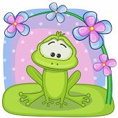 picture of orange frog  - Greeting card frog with flowers on a bench - JPG