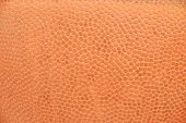 basketball texture poster