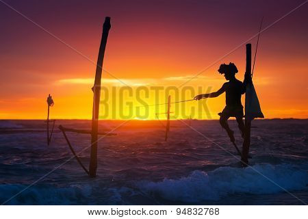 Sri Lanka's Stilt Fisherman
