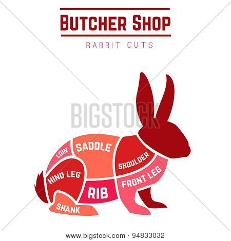 Rabbit cuts diagram for Butcher shop
