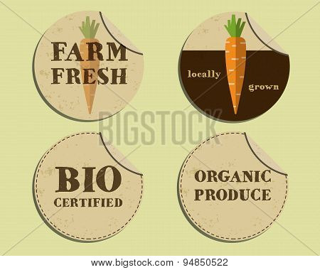 Stylish Farm Fresh label and sticker template with carrot. Mock up design. Retro colors. Best for na