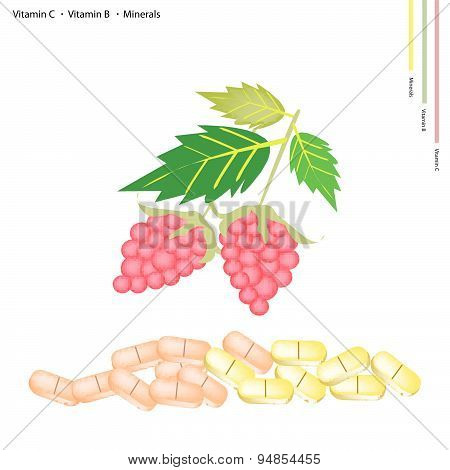 Raspberries With Vitamin K, B And Minerals