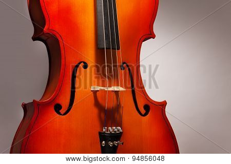 One violoncello fragment in vertical position