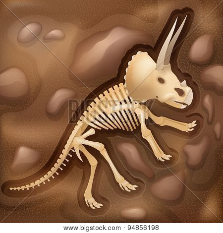 Dinasaur bones fossil illustration picture