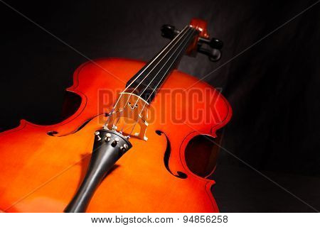 Violoncello body view on the black background