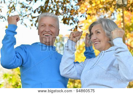 Senior couple with hands up