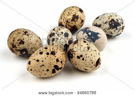 Seven Quail Eggs On White Background