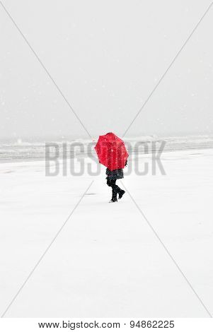 Person In The Snowy Storm