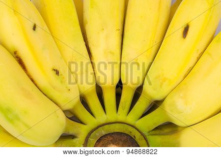 Bananas On A Background