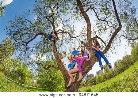 Fisheye view of teenagers sitting on tree benches