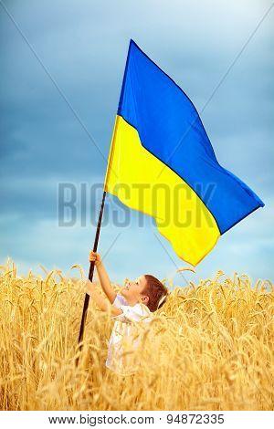 Happy Kid  Waving Ukrainian Flag On Wheat Field