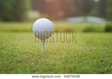 Close Up Of Golf Ball On Tee At Sundown