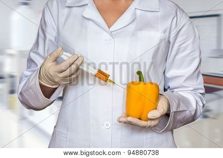 Scientist injecting liquid from syringe into yellow pepper