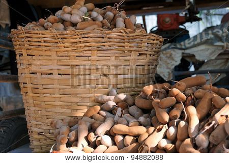 Tamarind Collect In The Basket
