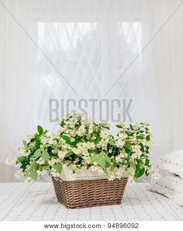 Jasmine Flowers In The Bedroom