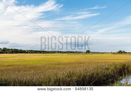 Beautiful Sky Over Wetland Marsh