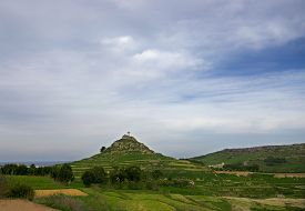 picture of maltese  - Maltese landscape with the fields - JPG