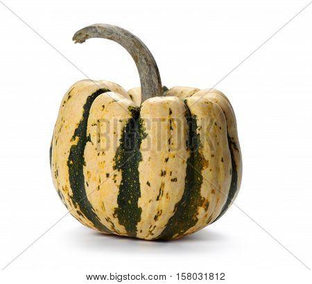 Decorative Pumpkin On White Background
