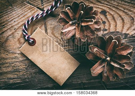 Pine Cones And Blank Tag