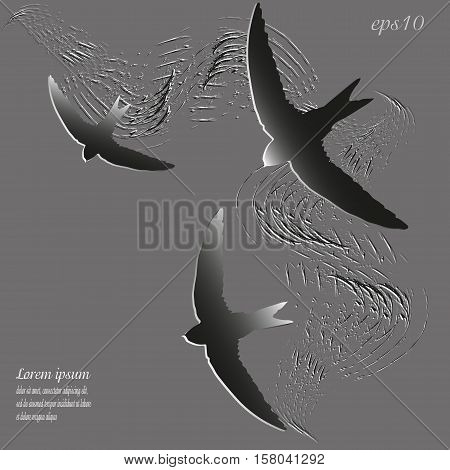 Silhouette picture three swifts Abstract design author bird wings flying style paper gray object strokes of paint sign text logo brochure background eps10 vector illustration Stock