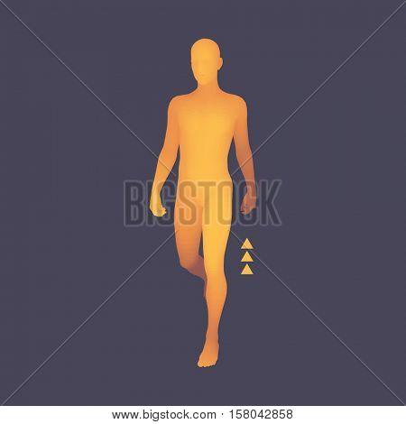 Walking Man. 3D Human Body Model. Design Element. Vector Illustration.