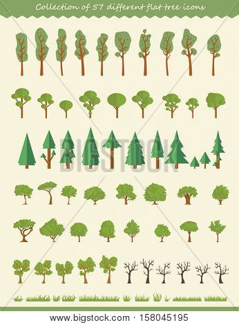 Big collection of tree illustrations, pine trees, evergreen trees, grass and other type of trees