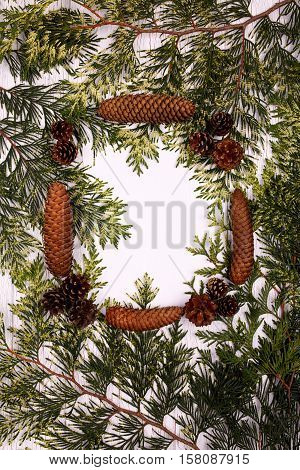 Frame Made Of Conifer Cones And Green Branches