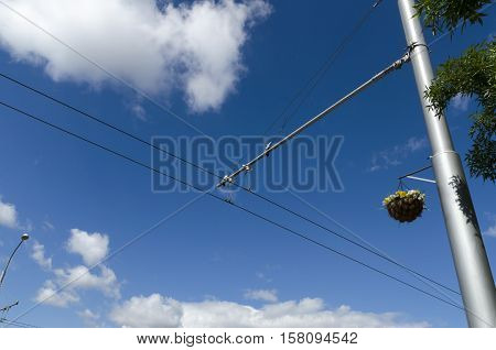 Basket with flowers decoration on a trolley wire pole