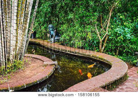 An ornamental water garden in Queens Park Hamilton Bermuda with golden carp.