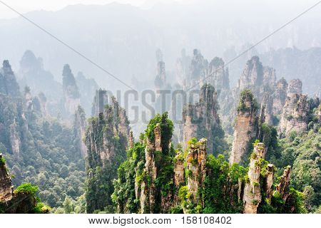 Natural Quartz Sandstone Pillars Of Fantastic Shapes