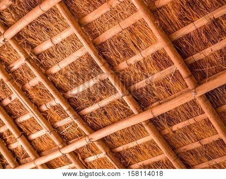 Detail of thatched roof of bamboo and straw