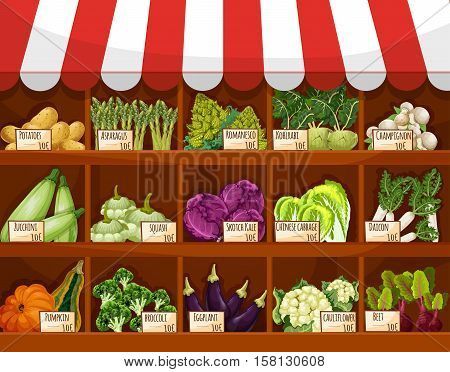 Vegetable market stall with fresh veggies. Broccoli and cabbage, eggplant, potato, mushroom, beet, zucchini and kohlrabi, asparagus, cauliflower, daikon vegetables on stand with price labels