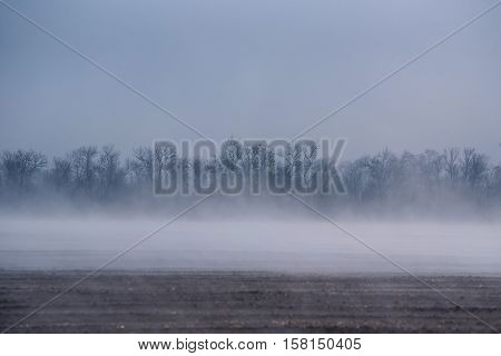 Scenic morning fog over recently plowed farmlands