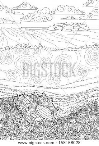 Seashell with high details. Adult antistress coloring page. Black white hand drawn zendoodle oceanic object. Underwater seascape for relax coloring for grown ups. Vector illustration.