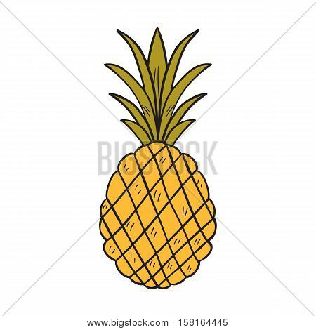Vector cartoon illustration with isolated hand drawn yellow pineapple. Exotic raw tropical fruit icon for juice design. Vector yellow pineapple healthy background