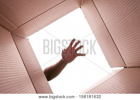 Inside View of Cardboard Box with Hand Reaching In