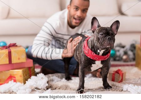 Loyal friend. Selective focus of a nice cute black dog standing among Christmas presents while being stroked by a pleasant optimistic delighted man