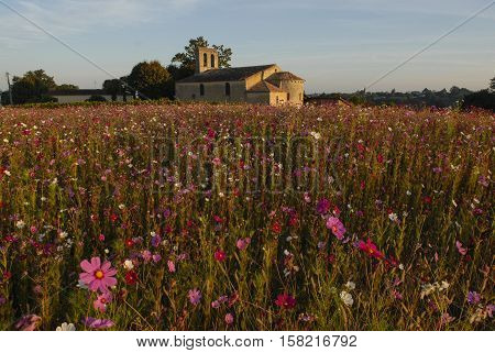 Churche chapel with flowers field Gironde Aquitaine France