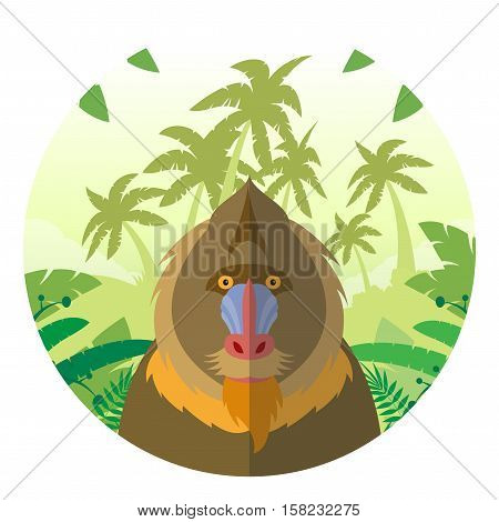 Flat Vector image of the Mandrill on the Jungle Background