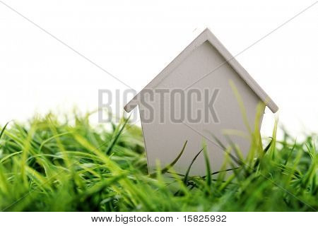 house on grass
