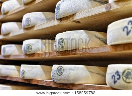 Wheels Of Aging Cheese In Ripening Cellar Franche Comte