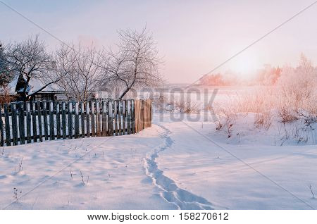 Winter rural landscape in sunny winter weather- winter village among frosty trees. Sunny view of picturesque winter countryside nature.Winter landscape scene lit by cold sunset light
