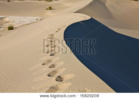 Sand Dune edge, Death Valley
