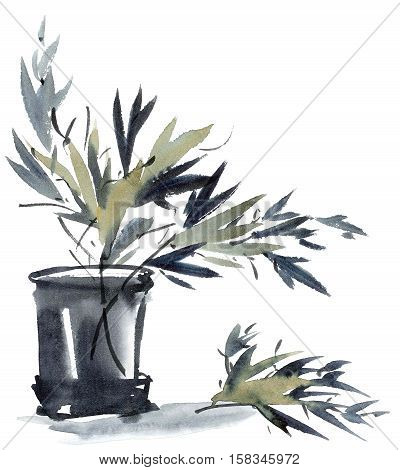 Watercolor and ink illustration of bamboo leaves in vase. Sumi-e u-sin style. Oriental traditional painting.